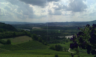 pictures/Omgeving_Barbaresco/IMAG0362_thumb.jpg