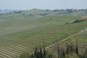 pictures/Omgeving_Barolo/DSC07707_thumb.JPG
