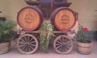 pictures/Omgeving_Barolo/IMAG0920_thumb.jpg